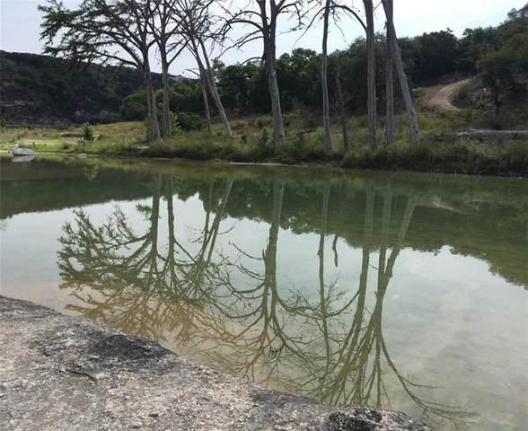 110 Water Park Rd, Wimberley, TX 78676 (#2882996) :: Ben Kinney Real Estate Team