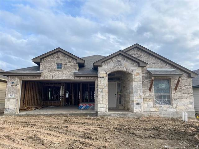 205 Gray Wolf Dr, San Marcos, TX 78666 (#3027309) :: Zina & Co. Real Estate