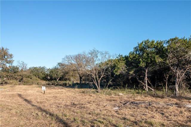 Lot 49 Park View Dr, Marble Falls, TX 78654 (#3120738) :: The Perry Henderson Group at Berkshire Hathaway Texas Realty