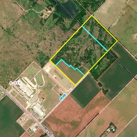 TBD County Rd 202, Kyle, TX 78640 (#3372379) :: R3 Marketing Group