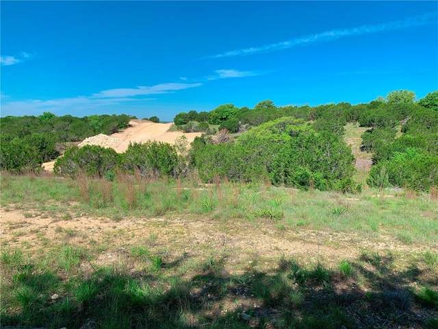 348 Vail River Rd, Dripping Springs, TX 78620 (#3600400) :: First Texas Brokerage Company