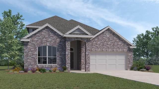 220 Cherry Laurel Ln, Kyle, TX 78640 (MLS #3634408) :: Brautigan Realty