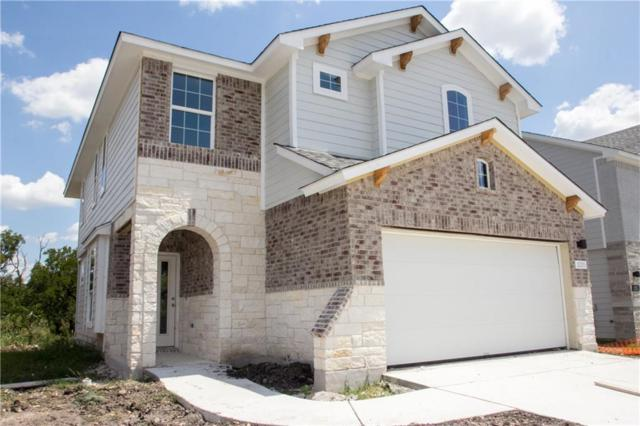 10005 Dalliance Ln, Manor, TX 78653 (#3837724) :: Papasan Real Estate Team @ Keller Williams Realty