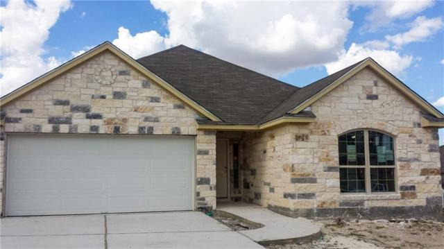 724 Coltrane Dr, Pflugerville, TX 78660 (#3844648) :: Amanda Ponce Real Estate Team