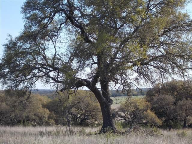 31 Gazelle Pt, Lampasas, TX 76550 (#3993959) :: Front Real Estate Co.