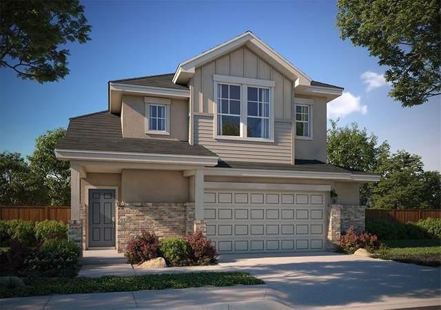 228 Blue Springs Pass, Kyle, TX 78640 (MLS #4015636) :: Brautigan Realty
