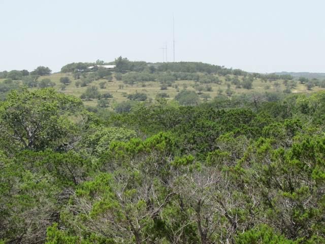 TBD Gage Ln, Wimberley, TX 78676 (#4243325) :: Lucido Global