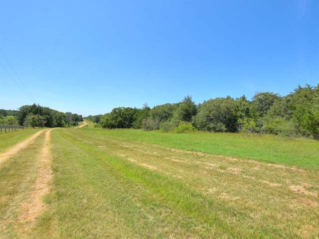 1135 Private Road 7039, Lexington, TX 78947 (#4426453) :: The Perry Henderson Group at Berkshire Hathaway Texas Realty