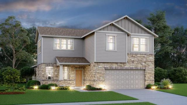 310 Simmental Loop, Hutto, TX 78634 (#4442748) :: The Gregory Group