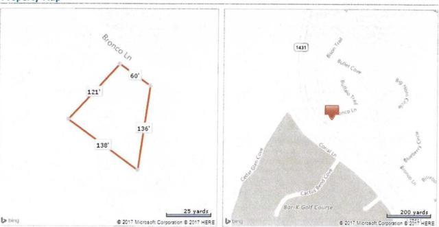 8522 Bronco Ln, Lago Vista, TX 78645 (#4689207) :: Austin Portfolio Real Estate - The Bucher Group