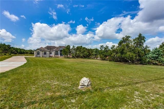 507 Saddletree Ln, Dripping Springs, TX 78620 (#4718140) :: Ben Kinney Real Estate Team