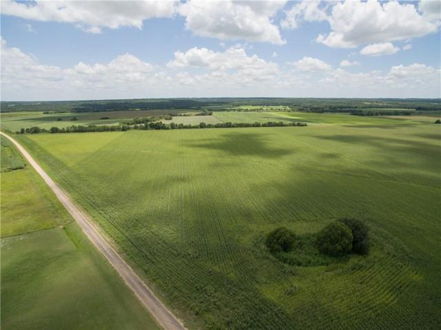 204 County Road 147, Buckholts, TX 76518 (#4822927) :: 12 Points Group