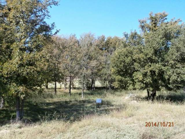 Lot 4 Eagle Point Dr, Kingsland, TX 78639 (#4833609) :: First Texas Brokerage Company