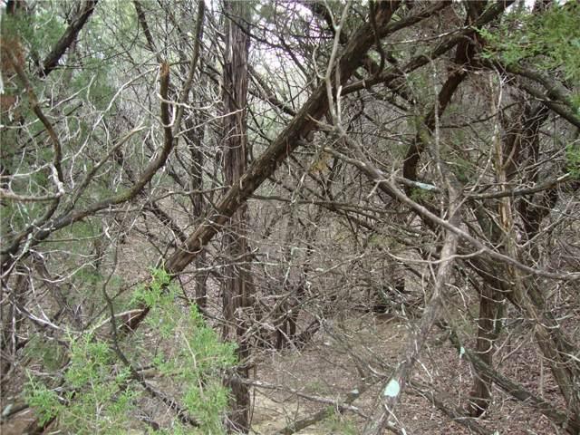 7301 Deepwood Dr, Lago Vista, TX 78645 (#4939941) :: Zina & Co. Real Estate