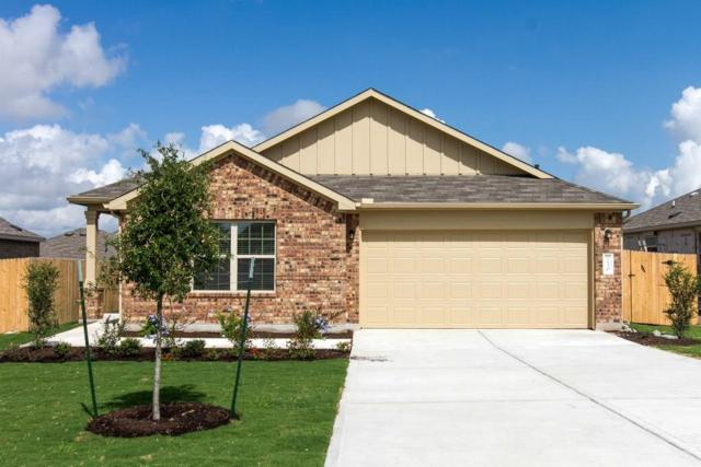 230 Tanzanite Cir, Buda, TX 78610 (#5068543) :: NewHomePrograms.com LLC