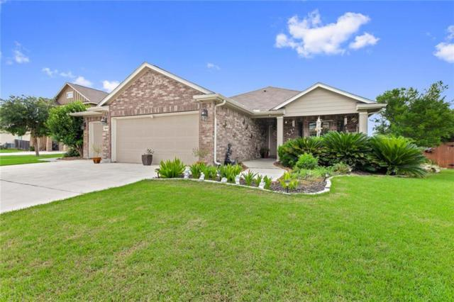 2449 Ibis Ave, New Braunfels, TX 78130 (#5091803) :: The Heyl Group at Keller Williams