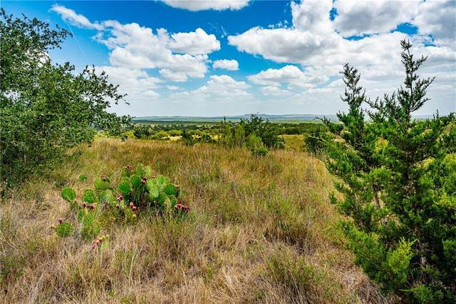 Lot 60 Summit Ledge Dr, Johnson City, TX 78636 (#5493091) :: R3 Marketing Group