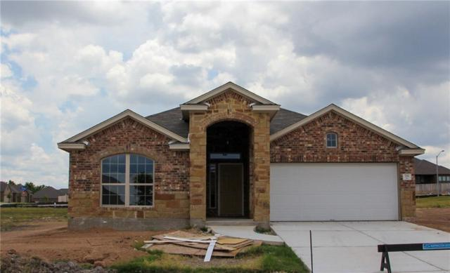 733 Coltrane Dr, Pflugerville, TX 78660 (#5980987) :: Amanda Ponce Real Estate Team