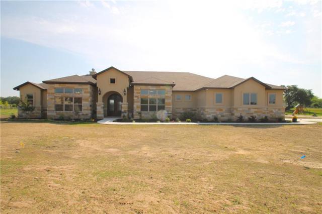309 Golden Eagle Way, Liberty Hill, TX 78642 (#6019519) :: Watters International