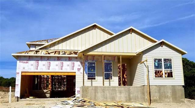201 Hazy Hills Loop, Dripping Springs, TX 78620 (#6173965) :: The Gregory Group
