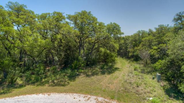 133 Ashland Dr, New Braunfels, TX 78132 (#6177787) :: Watters International