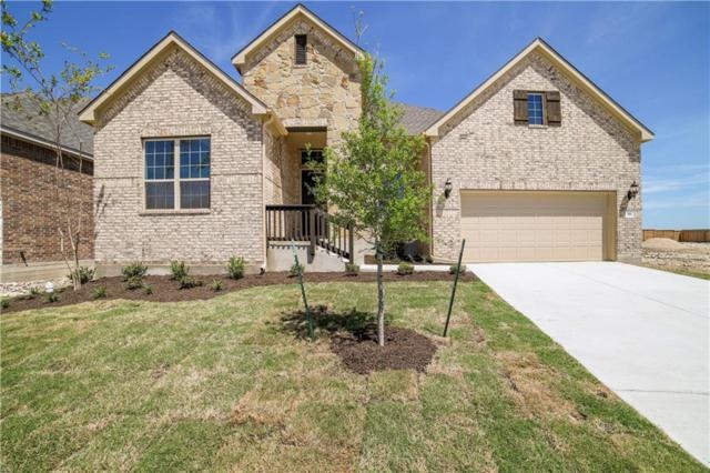 916 Anahuac Dr, Leander, TX 78641 (#6390264) :: The Heyl Group at Keller Williams