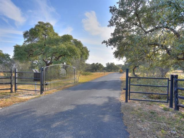 900 Panther Creek Rd, Driftwood, TX 78619 (#6510784) :: The ZinaSells Group