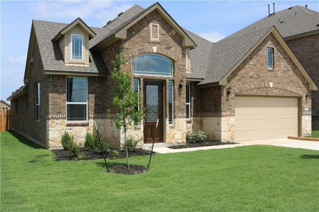 20412 Whimbrel Ct, Pflugerville, TX 78660 (#6616539) :: NewHomePrograms.com LLC