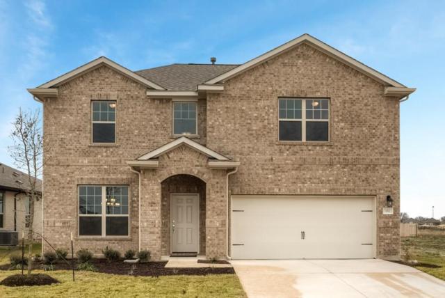 132 Peruvian Ln, Georgetown, TX 78626 (#6958144) :: Zina & Co. Real Estate