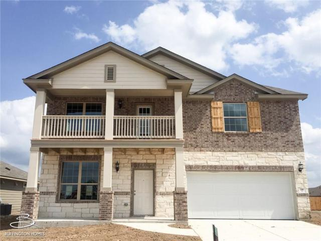 216 Horsemint Way, San Marcos, TX 78666 (#7160679) :: Ana Luxury Homes
