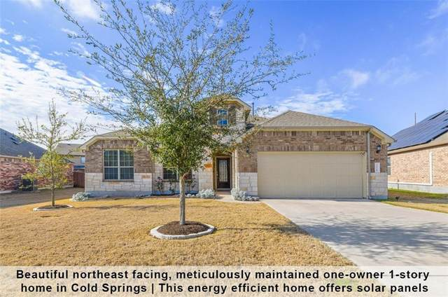 2128 Grand Lake Pkwy, Leander, TX 78641 (#8175171) :: Realty Executives - Town & Country