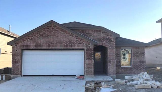 212 Dieter Drive, San Marcos, TX 78666 (#8194981) :: Ana Luxury Homes