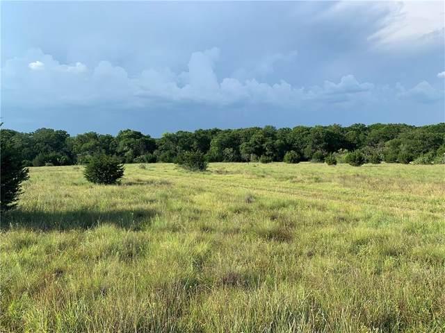 TBD Highway 281, Burnet, TX 78611 (#8539294) :: Tai Earthman | Keller Williams Realty