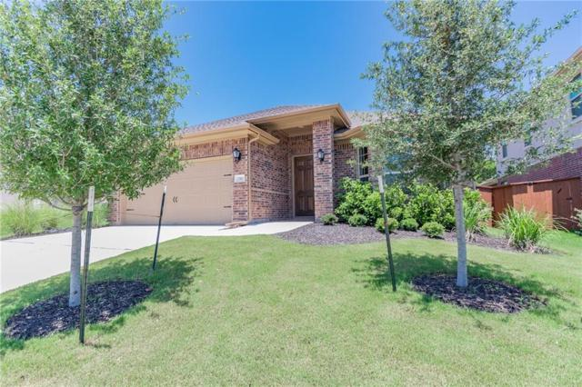 2740 Enza Ct, Round Rock, TX 78665 (#8893055) :: The ZinaSells Group
