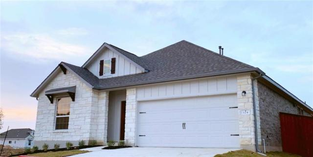 124 Double Mountain Rd, Liberty Hill, TX 78642 (#9031518) :: The Perry Henderson Group at Berkshire Hathaway Texas Realty