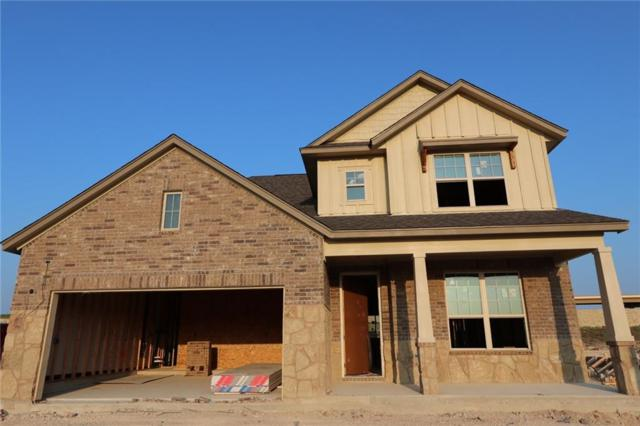 714 Hereford Loop, Hutto, TX 78634 (#9098076) :: The Gregory Group