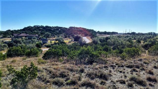 171 Dakota Mountain Dr, Dripping Springs, TX 78620 (#9130288) :: RE/MAX Capital City
