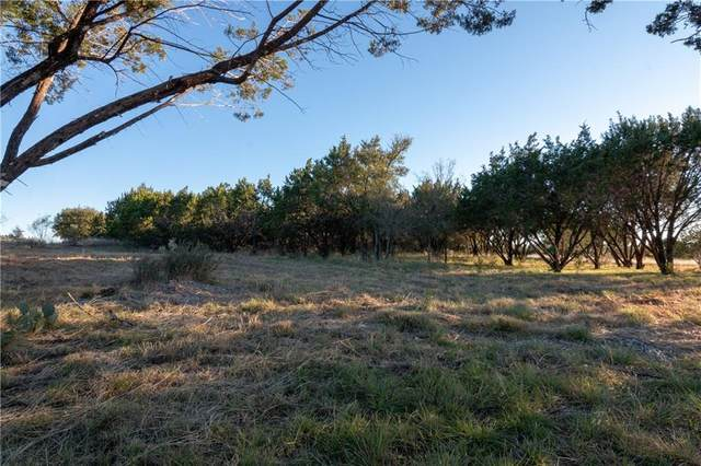 Lot 46 Park View Dr, Marble Falls, TX 78654 (#9297553) :: Ben Kinney Real Estate Team