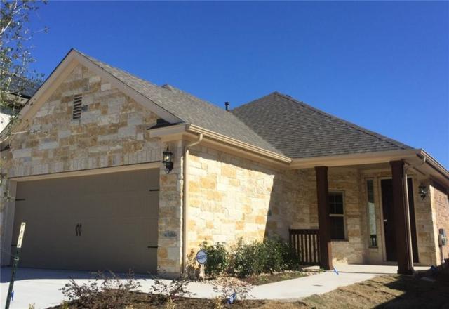 9521 Alex Ln, Austin, TX 78748 (#9452410) :: Ana Luxury Homes