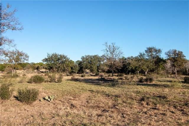 Lot 48 Park View Dr, Marble Falls, TX 78654 (#9454684) :: Papasan Real Estate Team @ Keller Williams Realty