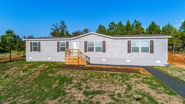 186 Pine Shadows Ln, Bastrop, TX 78602 (#9524574) :: 12 Points Group