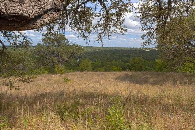 301 Napa Ct, Driftwood, TX 78619 (MLS #1451883) :: Green Residential