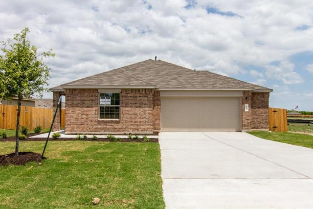 154 Florida Springs Dr, Kyle, TX 78640 (#2377502) :: Watters International