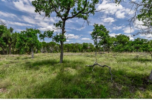 121 Taylor Creek Way, Liberty Hill, TX 78642 (#2547498) :: 3 Creeks Real Estate