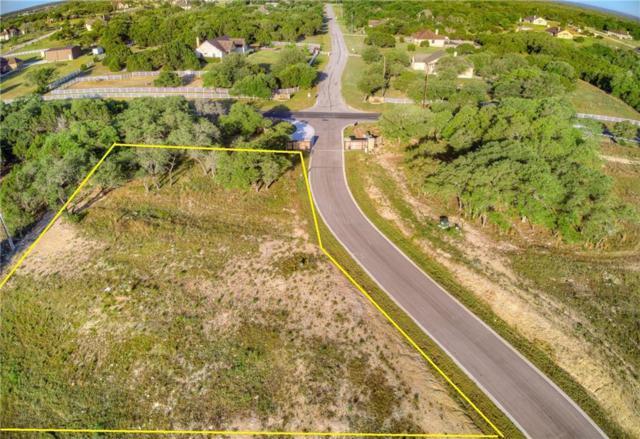 100 Saddle Ln, Liberty Hill, TX 78642 (#3909091) :: Zina & Co. Real Estate