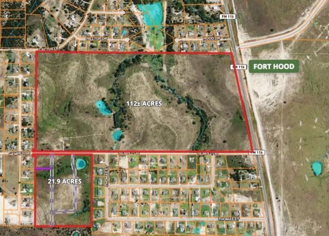 TBD Hempel Dr, Other, TX 76522 (#5125529) :: Papasan Real Estate Team @ Keller Williams Realty