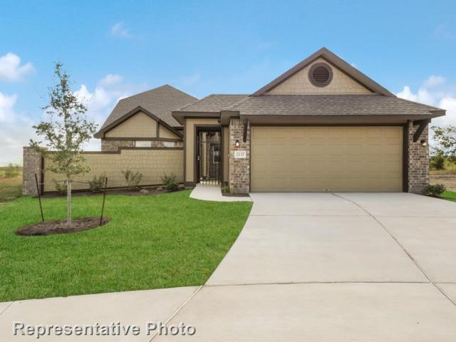 2137 Pindos Pony Way, Georgetown, TX 78626 (#5368228) :: Watters International