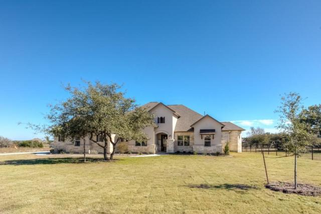 3408 Branch Hollow Dr, Leander, TX 78641 (#6338486) :: 12 Points Group