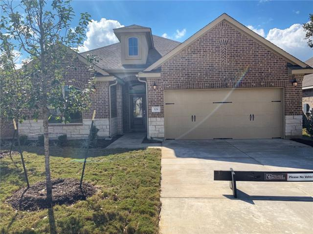 529 Scenic Bluff Dr, Georgetown, TX 78628 (#6858668) :: Ana Luxury Homes