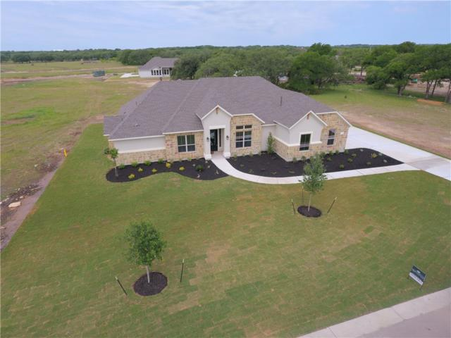 132 Dally Ct, Dripping Springs, TX 78620 (#6870234) :: The ZinaSells Group